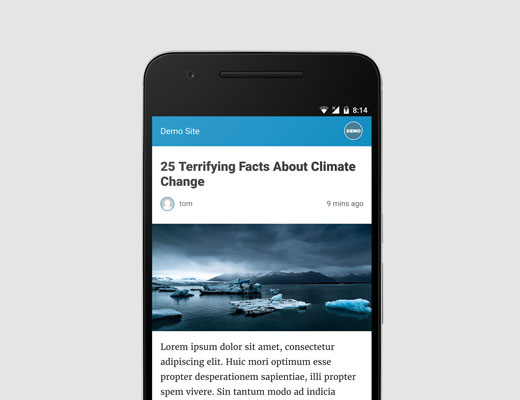 Setting up Accelerated Mobile Pages or AMP in WordPress